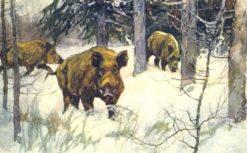 Boars | Konstantin Semenovich Vysotsky | Oil Painting
