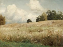 Landscape with a Field | Gustaf Rydberg | Oil Painting