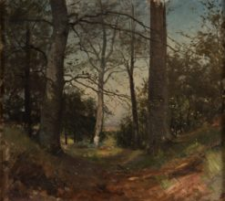 In the Forest. Motif from Stehag | Gustaf Rydberg | Oil Painting