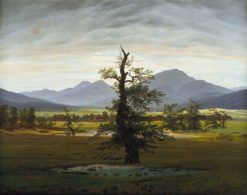 Village Landscape in Morning Light (also known as The Lone Tree) | Caspar David Friedrich | Oil Painting
