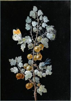 Gooseberries with a butterfly