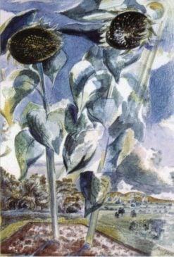 Sunflower and Sun | Paul Nash | Oil Painting