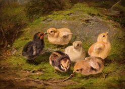 Chickens | Arthur Fitzwilliam Tait | Oil Painting