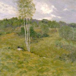Birch-Clad Hills | Ben Foster | Oil Painting