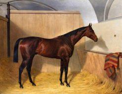 Portrait of a Horse | Emil Adam | Oil Painting