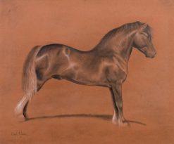 Welsh Stallion | Emil Adam | Oil Painting