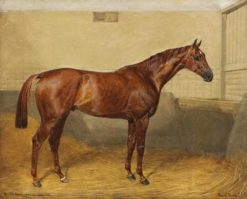 The Show Jumper 'Royal Meath' in the Stable | Emil Adam | Oil Painting