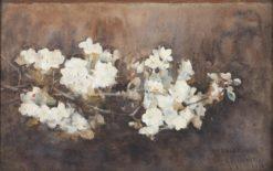 Apple Blossom | Arthur Melville | Oil Painting