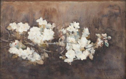 Apple Blossom   Arthur Melville   Oil Painting