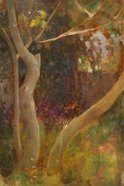 A Tree in Woodland | Benjamin Haughton | Oil Painting