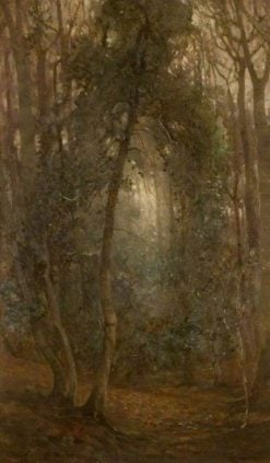 A Woodland Vista | Benjamin Haughton | Oil Painting