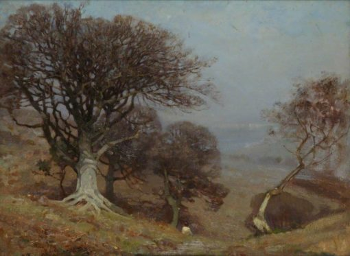 Beeches on the Quantocks | Benjamin Haughton | Oil Painting