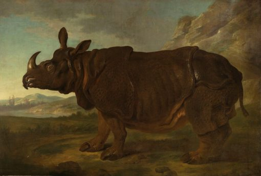 Clara the Rhinoceros in Paris | Jean-Baptiste Oudry | Oil Painting