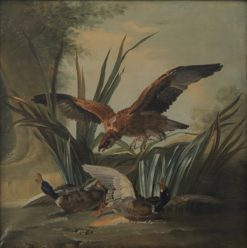 A Hawk Puncing on a Pair of Ducks | Jean-Baptiste Oudry | Oil Painting